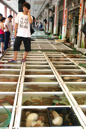 China Outdoor Fish Market