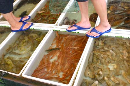 Shrimp and seafood