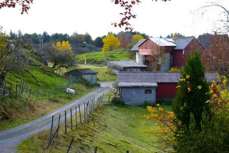 Norwegian Land