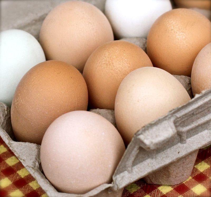 fresh eggs ashland